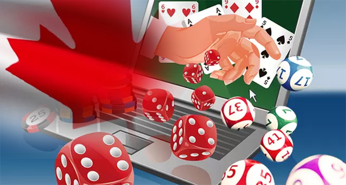 A Beginners Guide To Contrarian Betting Plans For Sports And Casino